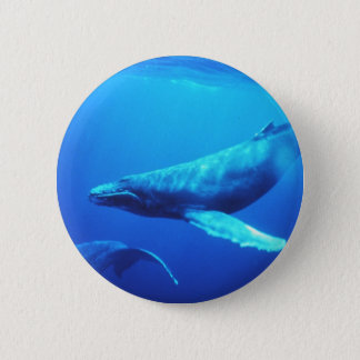Humpback Whale Pinback Button
