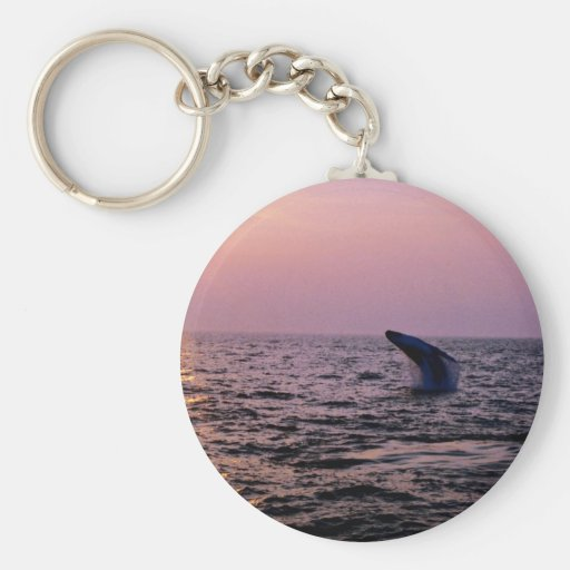 Humpback whale putting on a display at sunset, Cap Keychain