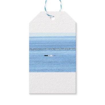 Beach Themed HUMPBACK WHALE QUEENSLAND AUSTRALIA GIFT TAGS