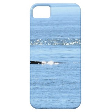Beach Themed HUMPBACK WHALE QUEENSLAND AUSTRALIA iPhone SE/5/5s CASE