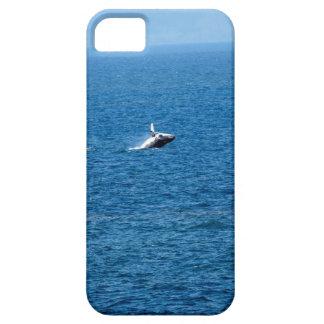 HUMPBACK WHALE QUEENSLAND AUSTRALIA iPhone SE/5/5s CASE