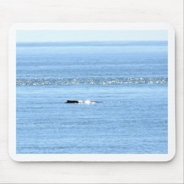 Beach Themed HUMPBACK WHALE QUEENSLAND AUSTRALIA MOUSE PAD