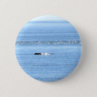 Beach Themed HUMPBACK WHALE QUEENSLAND AUSTRALIA PINBACK BUTTON