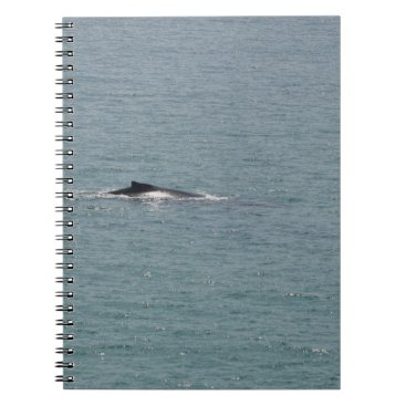 Beach Themed HUMPBACK WHALE QUEENSLAND AUSTRALIA SPIRAL NOTEBOOK