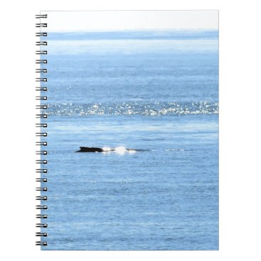 Beach Themed HUMPBACK WHALE QUEENSLAND AUSTRALIA SPIRAL NOTEBOOK
