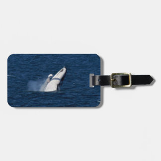 HUMPBACK WHALE QUEENSLAND AUSTRALIA TAG FOR LUGGAGE