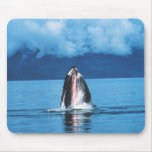 Humpback Whale Rising Mouse Pad