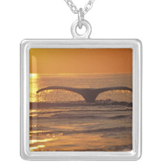 Humpback whale silver plated necklace