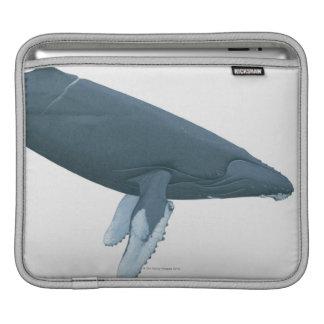 Humpback Whale Sleeve For iPads