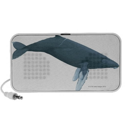 Humpback Whale Notebook Speakers