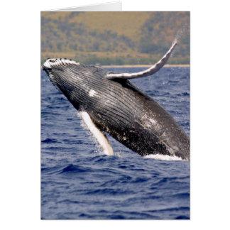 Humpback Whale Splashing Card