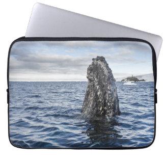 Humpback Whale Spyhops | Hope Bay, Antarctica Computer Sleeve