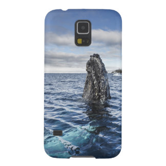 Humpback Whale Spyhops | Hope Bay, Antarctica Galaxy S5 Cover