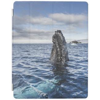 Humpback Whale Spyhops | Hope Bay, Antarctica iPad Smart Cover