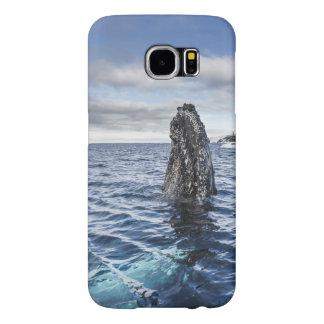 Humpback Whale Spyhops | Hope Bay, Antarctica Samsung Galaxy S6 Case