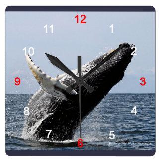 Humpback whale square wall clock