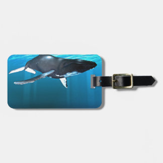 Humpback Whale Swimming Tag For Luggage
