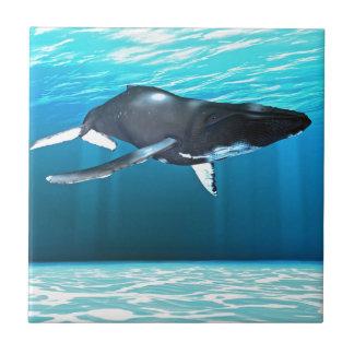 Humpback Whale Swimming Tile