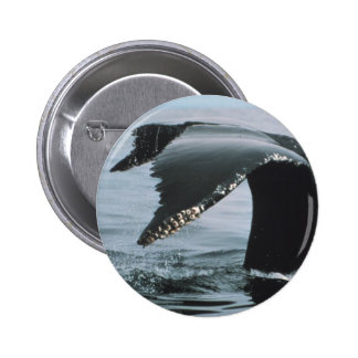 Humpback Whale Tail 2 Inch Round Button