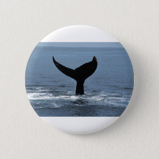 Humpback whale tail button