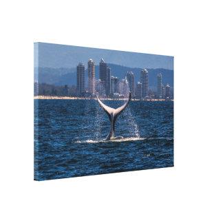 Humpback Whale Tail Fluke Canvas Print