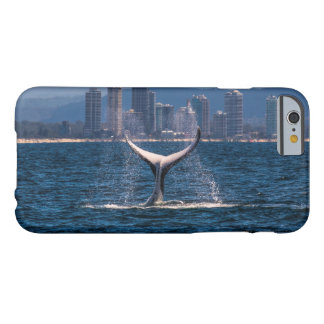 Humpback Whale Tail Fluke Display Barely There iPhone 6 Case