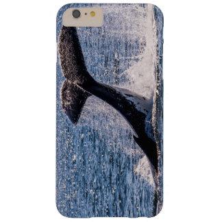 Humpback Whale - Tail Fluke iPhone 6 plus case