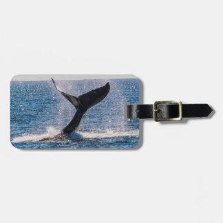 Humpback Whale - Tail Fluke Luggage Tag