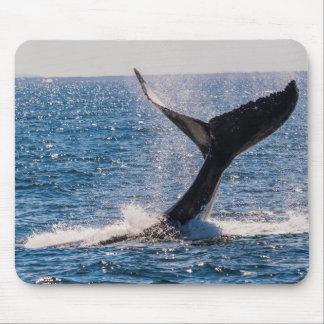 Humpback Whale - Tail Fluke Mousepad