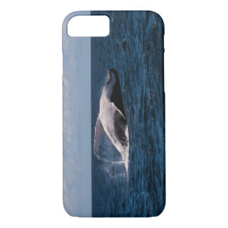 Humpback Whale Tail Fluke Off Surfers Paradise iPhone 7 Case