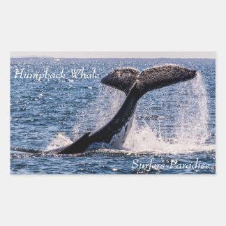 Humpback Whale Tail Fluke Off Surfers Paradise Rectangular Sticker