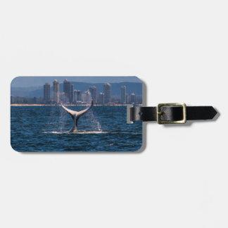 Humpback Whale Tail Fluke Surfers Paradise Bag Tag
