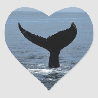 Humpback whale tail heart sticker