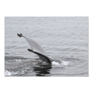 Humpback Whale Tail Invitations