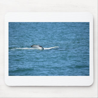 HUMPBACK WHALE TAIL MACKAY QUEENSLAND AUSTRALIA MOUSE PAD