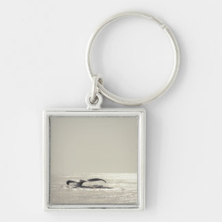 Humpback whale, tail over water surface keychain