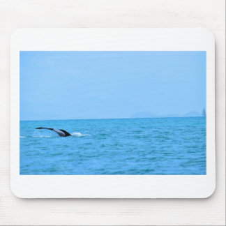 HUMPBACK WHALE TAIL QUEENSLAND AUSTRALIA MOUSE PAD