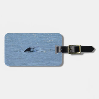 HUMPBACK WHALE TAIL QUEENSLAND AUSTRALIA TAG FOR LUGGAGE