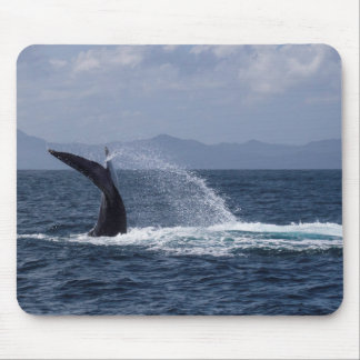 Humpback Whale Tail Splash Mouse Pad