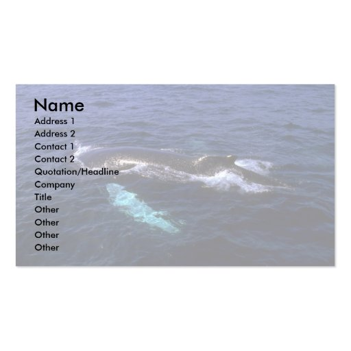 Humpback Whale visible beneath water Double-Sided Standard Business Cards (Pack Of 100)