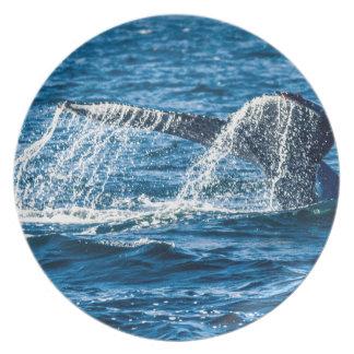 Humpback Whale Washington State Melamine Plate