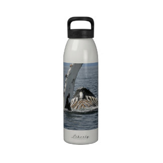 Humpback Whale Water Bottles