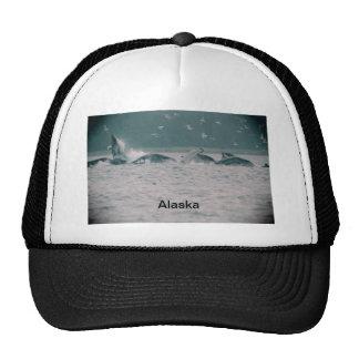 humpback whales, Alaska Trucker Hat