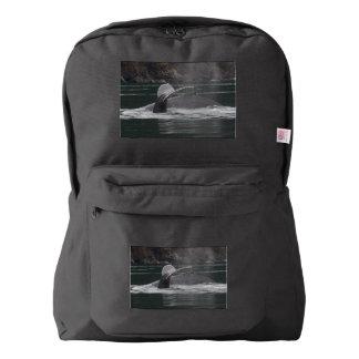 Humpback whales backpack