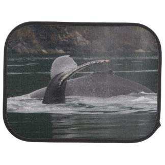 Humpback whales floor mat