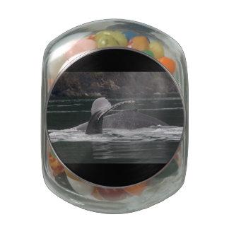 Humpback whales glass jars