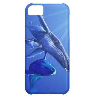 Humpback Whales i phone 5 case Case For iPhone 5C