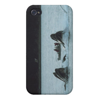 humpback whales iPhone 4 case
