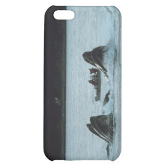 humpback whales iPhone 5C cases