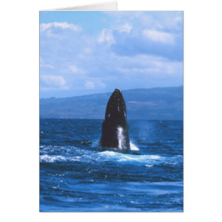 Humpback Whales Jumping Card